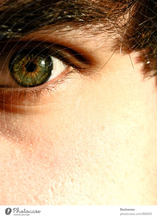 Man Green Face Eyes Skin Near Come Eyelash Cancelation Dismissive Rejected