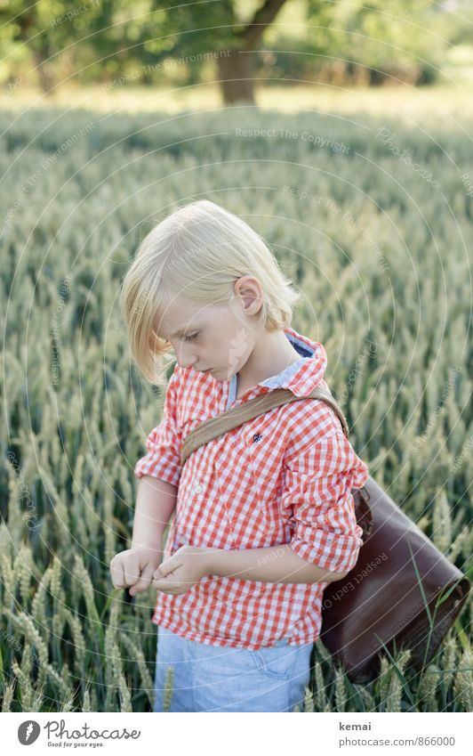 schoolboy Leisure and hobbies Human being Boy (child) Infancy Life Head Face Ear Arm Hand 1 3 - 8 years Child Environment Plant Agricultural crop Grain Wheat