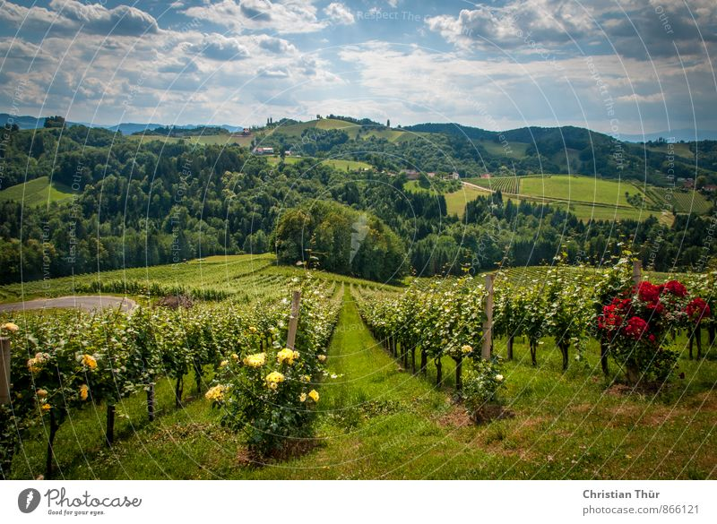 Far Land Styria / Gamlitz Wellness Harmonious Well-being Contentment Senses Relaxation Calm Meditation Leisure and hobbies Vacation & Travel Tourism Trip