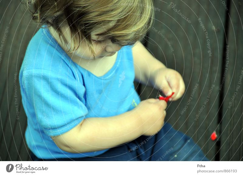 Human being Child Masculine Infancy Sit Baby Observe Touch Discover Toddler Advice Research 0 - 12 months Rose leaves