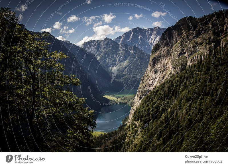 idyllic Nature Landscape Elements Water Summer Beautiful weather Forest Rock Mountain Lakeside Hiking Authentic Adventure Berchtesgaden Alpes Tree Freedom