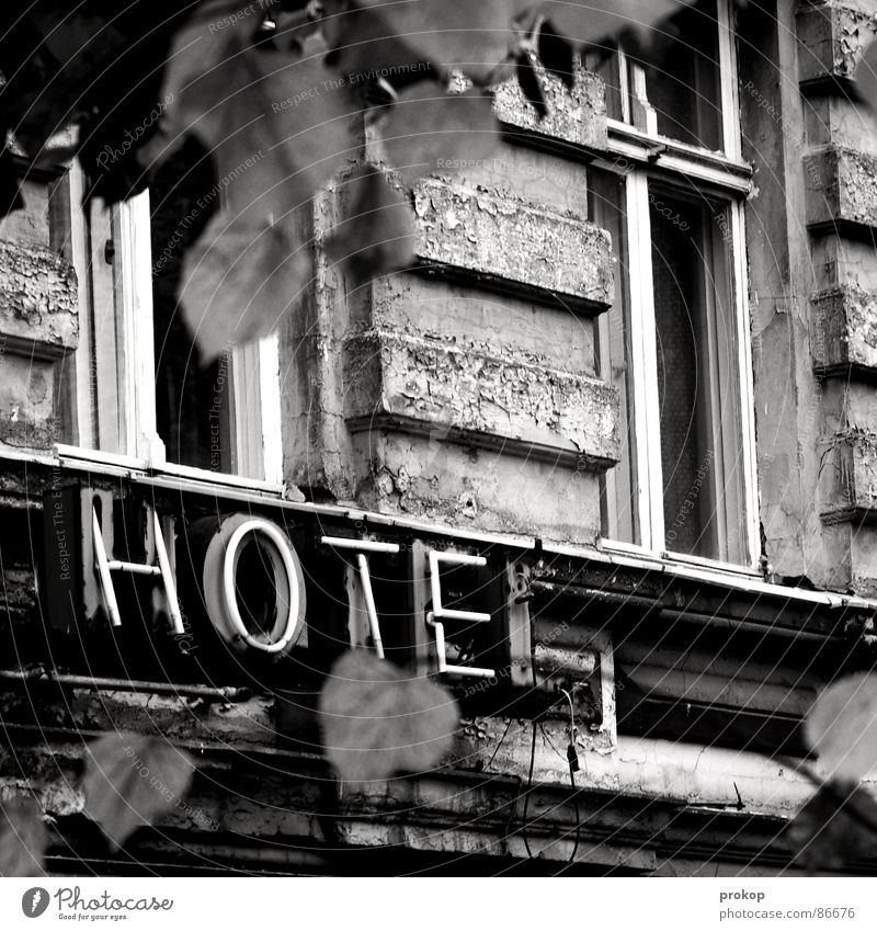Leaf Window Berlin Facade Black & white photo Characters Construction site Letters (alphabet) Transience Putrefy Derelict Gastronomy Hotel Fatigue Shabby