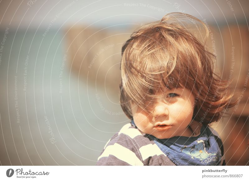 Gone with the wind... Wellness Contentment Summer Summer vacation Sun Beach Ocean Human being Masculine Toddler Boy (child) Head Hair and hairstyles Face 1