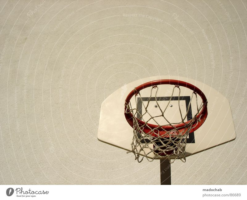 INVITATION TO THE BASKET Hard court Ball sports Playing Leisure and hobbies Hand Summer Perspire Perspiration Romp Joy Funny Summer vacation time Sporting event