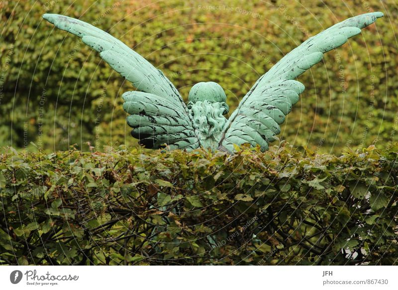 winged Decoration Angel Grand piano angel wings Statue Copper Hedge Green Memory Grief Cemetery Death Grave consideration leave sb./sth. Concern Legacy Bequest