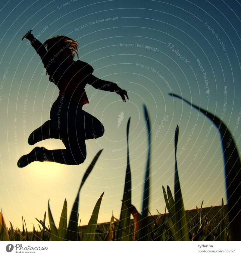 high up Hop Spring Meadow Grass Green Style Sunset Posture Blade of grass Worm's-eye view Woman Emotions Human being silouette Flying Joy Nature Landscape