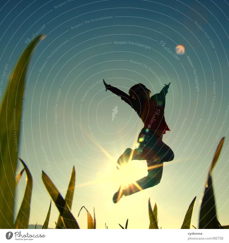 High up I Hop Spring Meadow Grass Green Style Sunset Posture Blade of grass Worm's-eye view Woman Sunbeam Emotions Human being Flying Joy Nature Landscape