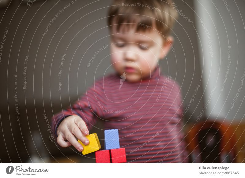 Babel Playing Kindergarten Child Study Masculine Toddler Boy (child) Infancy 1 Human being 1 - 3 years Short-haired Toys Build Touch Red Patient Accuracy