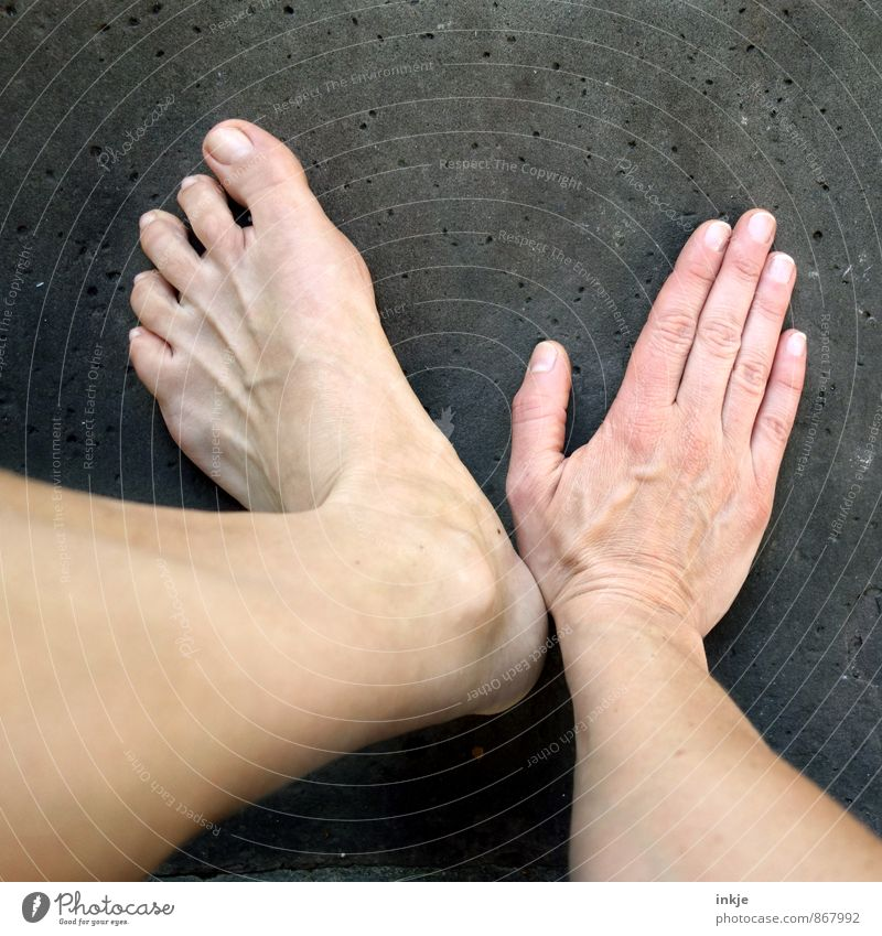 V Adults Life Hand Feet 1 Human being Movement Barefoot hand and foot Rest on Side by side Symbolism Sign language Dark background Pallid Naked flesh
