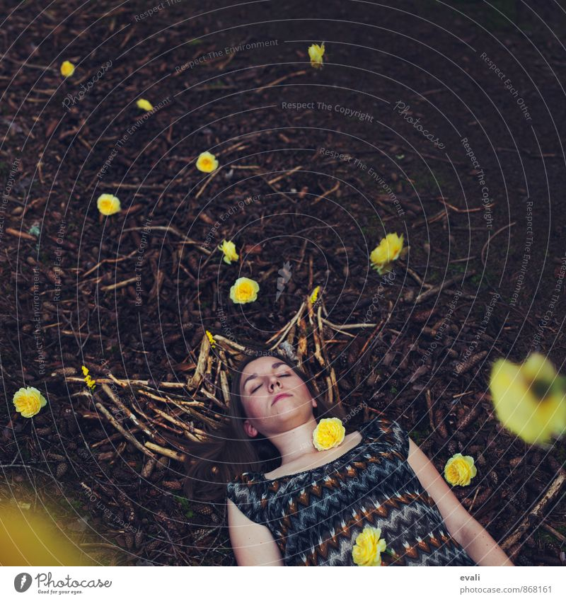 Human being Woman Child Youth (Young adults) Flower 18 - 30 years Yellow Adults Feminine Wood Brown Dream 13 - 18 years Sleep Rose King