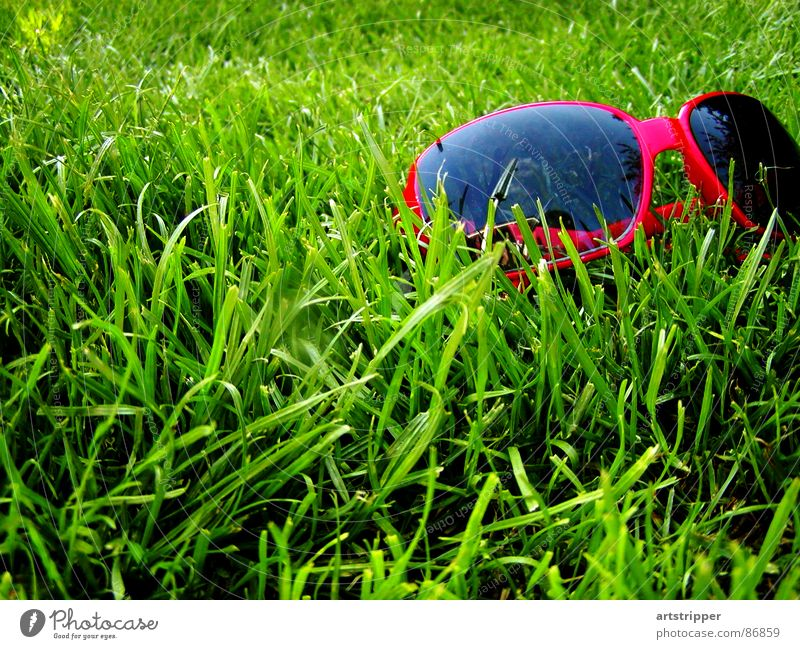Green Red Summer Vacation & Travel Relaxation Meadow Grass Spring Garden Warmth Glass Fly Weather Lawn Break Eyeglasses