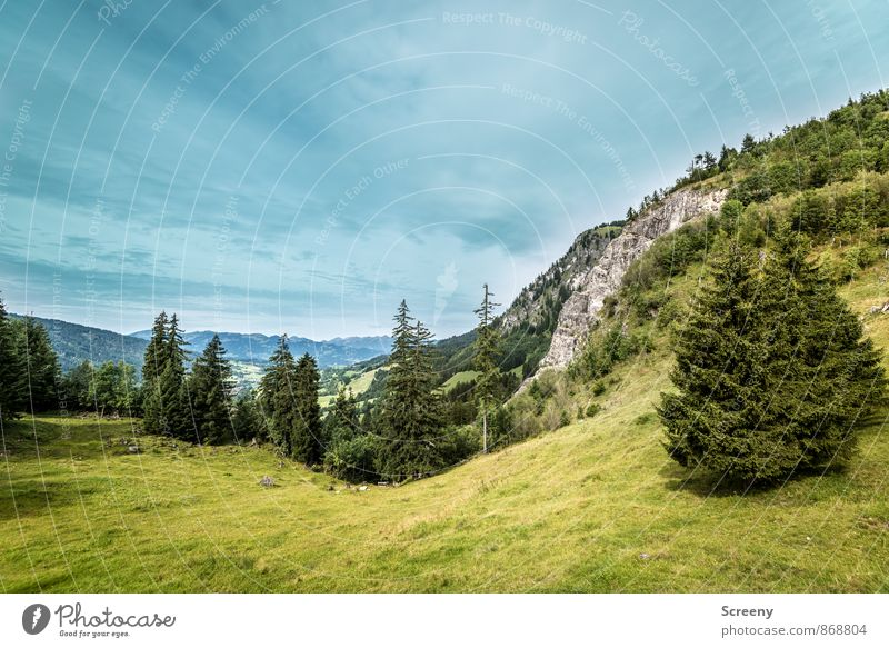 View into the valley Nature Landscape Plant Clouds Summer Weather Alps Mountain Allgäu Allgäu Alps Blue Green Calm Pasture Fir tree Rock Colour photo