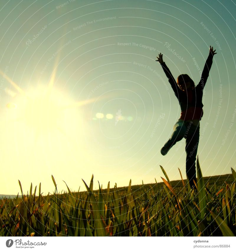 High up III Hop Spring Meadow Grass Green Style Sunset Posture Blade of grass Worm's-eye view Woman Sunbeam Emotions Human being Flying Joy Nature Landscape