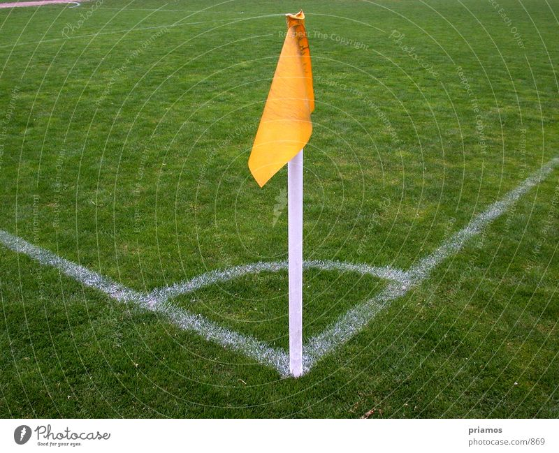 corner flag Playing field Corner World Cup Sports Soccer Line Lawn