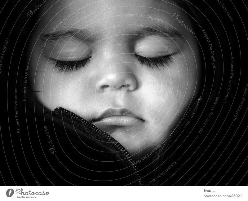 Human being Child Beautiful Face Calm Happy Dream Baby Contentment Sleep Trust Toddler Safety (feeling of) Portrait photograph Prince Charming