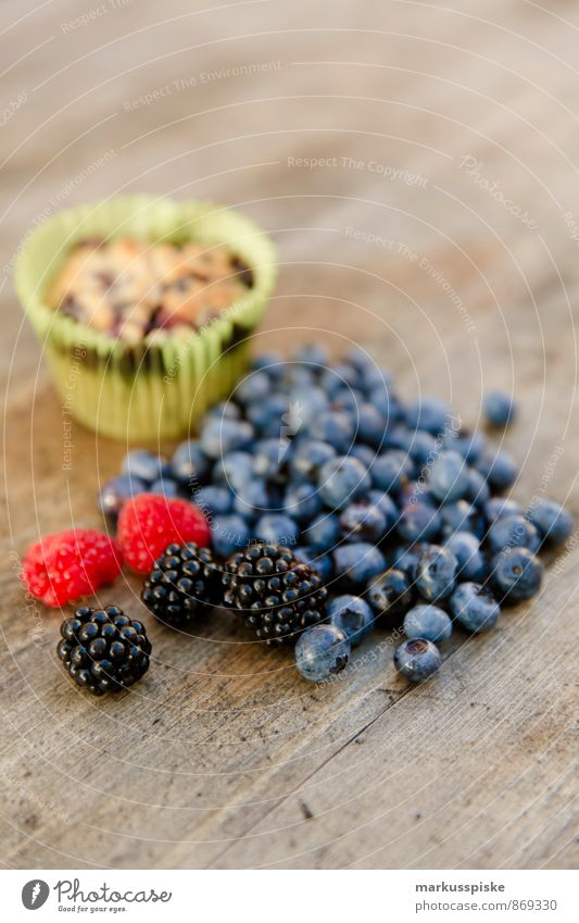Blueberry Muffin Food Fruit Grain Dough Baked goods Dessert Candy Blackberry Raspberry Nutrition Eating Lifestyle Overweight Living or residing Flat (apartment)