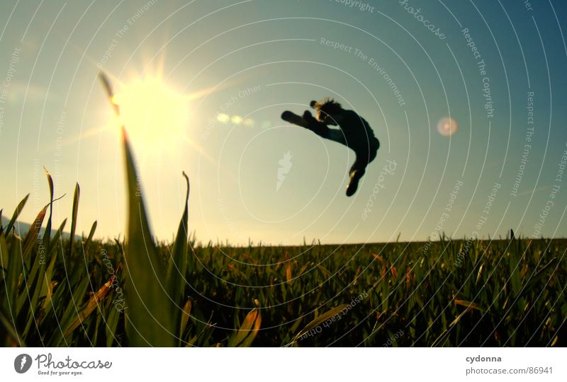 The Bruce Lee Story Hop Meadow Grass Green Style Sunset Posture Blade of grass Worm's-eye view Sunbeam Kick Footstep Martial arts Emotions Human being fighter