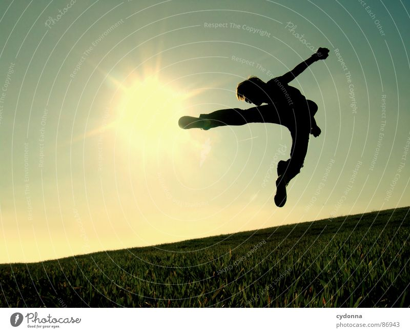 The Bruce Lee Story II Hop Meadow Grass Green Style Sunset Posture Blade of grass Worm's-eye view Sunbeam Kick Footstep Martial arts Emotions Human being Sky