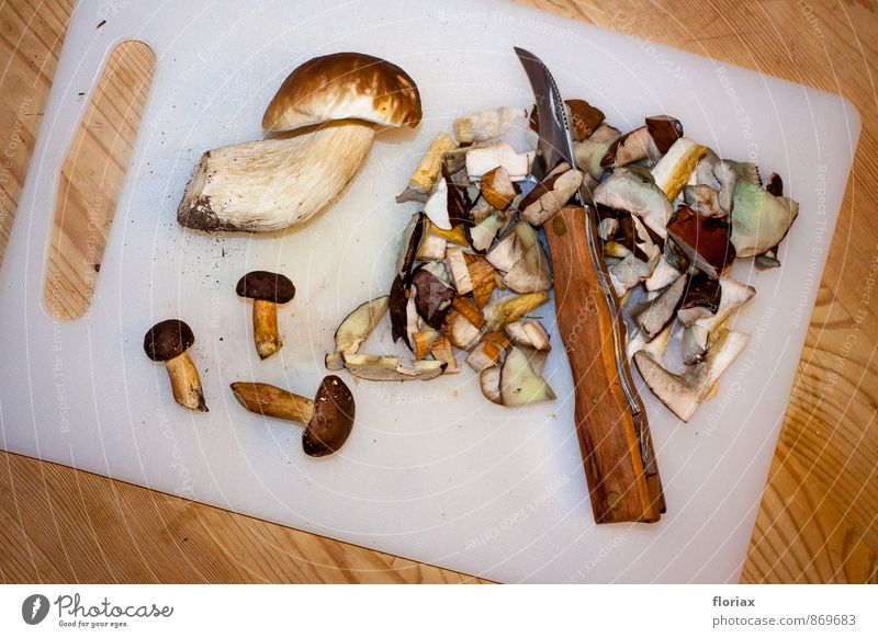 after the mushroom walk. Food Nutrition Vegetarian diet Knives Environment Plant Earth Autumn Forest Wood Metal Plastic Eating Esthetic Brown Trust Inhibition