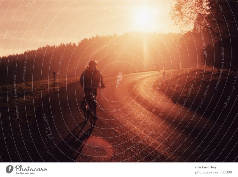 sun wheel Cycling Sunset Sunrise Forest Red Yellow Leisure and hobbies Bicycle Street Orange downhill BMX bike Trip Landscape