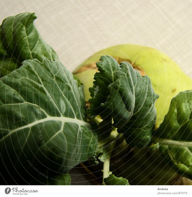 Green Nutrition Life Healthy Table Round Kitchen Vegetable Vegetarian diet Verdant Kohlrabi