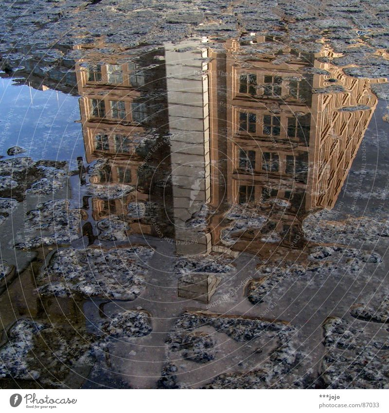 Water City House (Residential Structure) Street Berlin Stone Building Crazy Speed Places Middle Cobblestones Pavement Puddle Capital city Mirror image