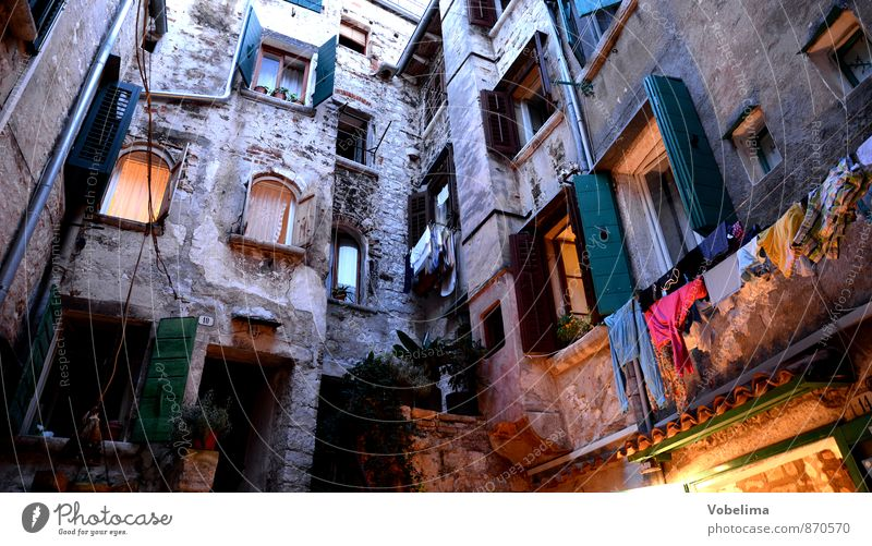 Houses in Rovinj, in the evening Tourism Living or residing House (Residential Structure) Village Port City Old town Manmade structures Building Architecture