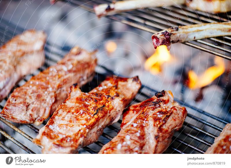 The barbecue season is open Food Meat Nutrition Lunch Dinner Buffet Brunch Picnic Organic produce Slow food Lifestyle Healthy Vacation & Travel Summer
