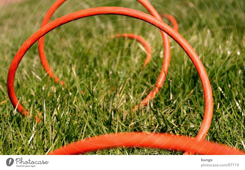 Keep Rollin' Cable Grass Meadow Summer Spring Blade of grass Subsoil Electricity Arches National Park Jump Connection Communicate bow attach blades of grass