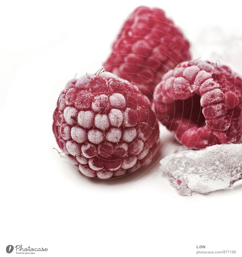 Raspberry ice cooled Food Fruit Raspberry ice cream Ice cube Cold Frozen Nutrition Plant Healthy Red Colour photo Studio shot Deserted Copy Space left