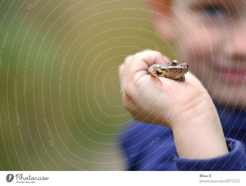 Human being Child Nature Hand Animal Forest Boy (child) Playing Lake Leisure and hobbies Infancy Smiling To hold on Catch Toddler Brook