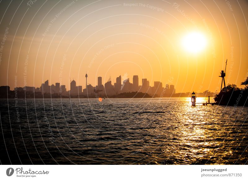 Sydney Sunset Harbour Sightseeing City trip Cruise Waves Opera house Cloudless sky Sunrise Sunlight Beautiful weather Coast Bay Boating trip To enjoy Warmth