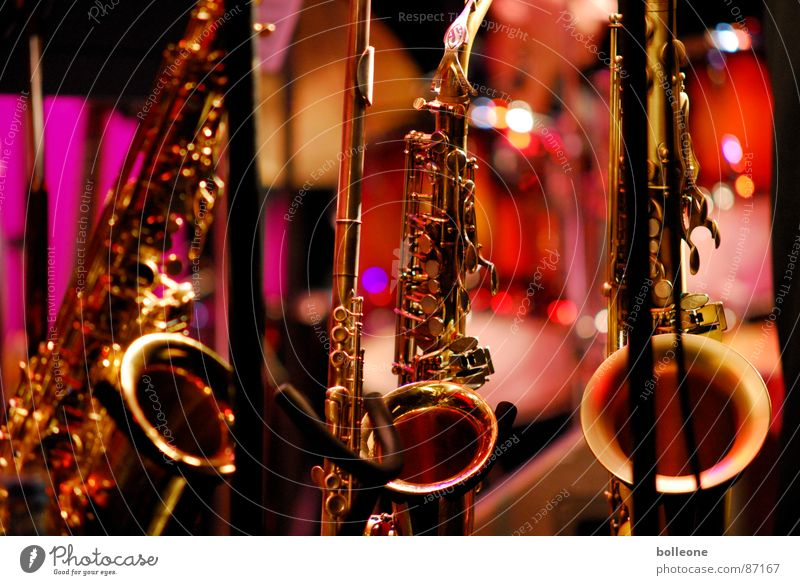 Joy Playing Art Moody Music Culture Concert Prayer Musical instrument Musician Sound Tone Musical notes Music festival Musical instrument string Jazz