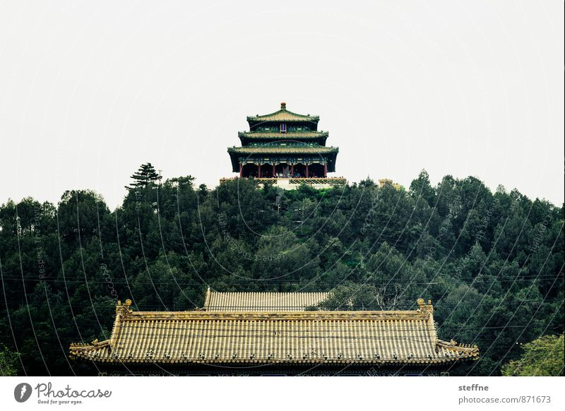 coal mountain Tree Beijing China Old town Palace Tourist Attraction Landmark Forbidden city Exceptional Asian architecture Colour photo Copy Space top