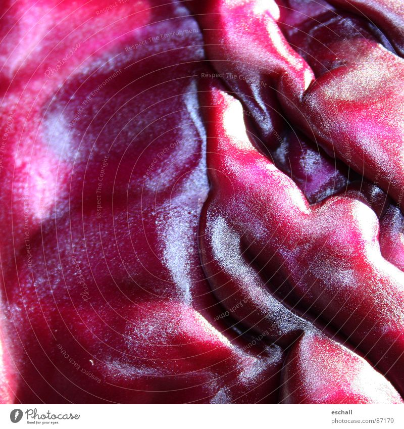 Brassica I Colour photo Macro (Extreme close-up) Pattern Structures and shapes Reflection Vegetable Waves Kitchen Plant Agricultural crop Violet Red Red cabbage