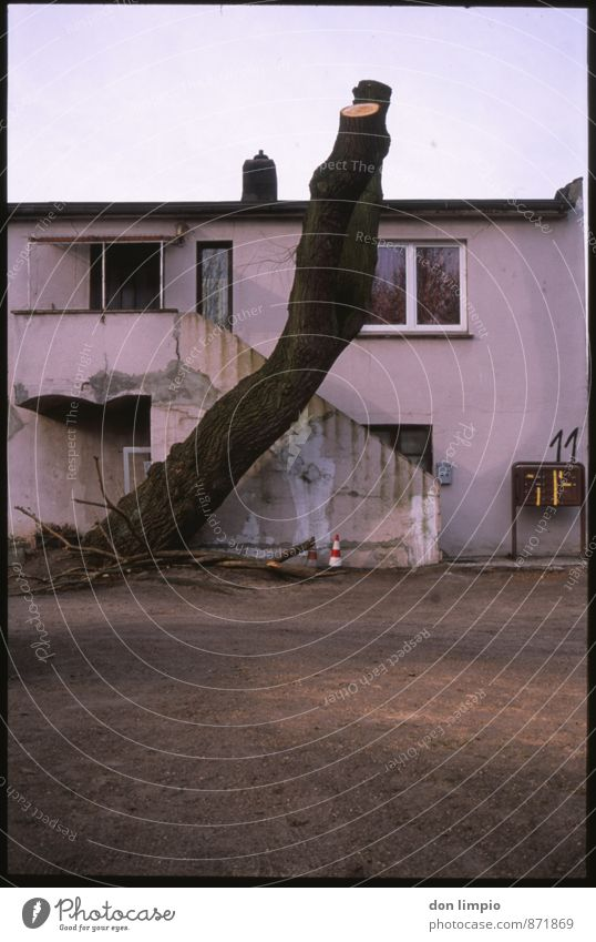 I want to stay where I've never been Flat (apartment) House (Residential Structure) Autumn Tree Town Detached house Ruin Living or residing Dark Hideous Gloomy