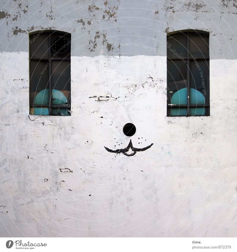 fakelook Art Painting and drawing (object) Wall (barrier) Wall (building) Facade Window Graffiti Observe Sharp-edged Funny Smart Crazy Town Contentment Discover