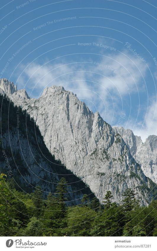 Nature Clouds Forest Mountain Climbing Treetop Mountaineering Steep Massive Alpine Mountain ridge Steep face Kaiser Mountains