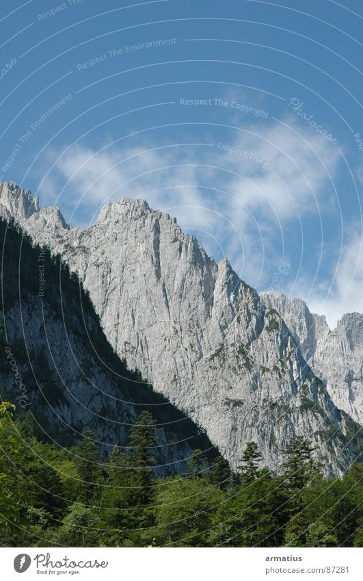 savage emperor Mountaineering Alpine Climbing Nature Kaiser Mountains Steep face Massive Exterior shot Colour photo Deserted Forest Treetop Clouds