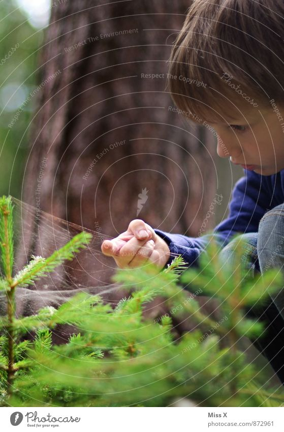 Human being Child Nature Tree Animal Forest Cold Emotions Boy (child) Moody Rain Infancy Drops of water Wet Fingers Adventure