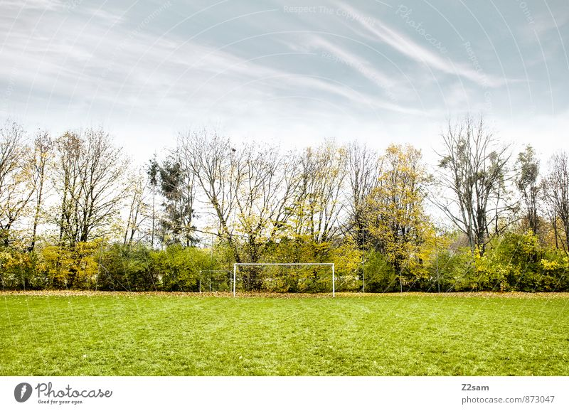 GAME R A U U M Leisure and hobbies Playing Sporting Complex Football pitch Soccer Goal Nature Landscape Sky Autumn Beautiful weather Bushes Meadow Natural Blue