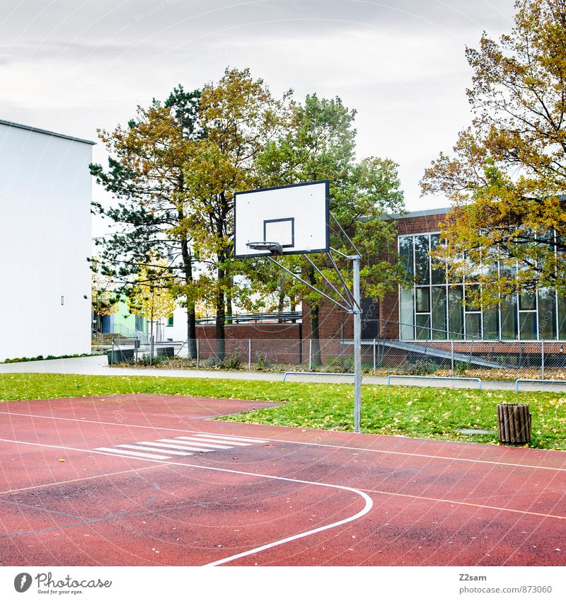 GAME R A U U M Leisure and hobbies Playing Sporting Complex Basketball arena Basketball basket Tartan Autumn Tree Grass Bushes Meadow Town Dirty Simple Cold