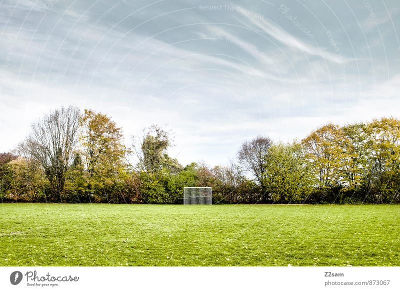 GAME R A U U M Leisure and hobbies Playing Sporting Complex Football pitch Nature Landscape Sky Clouds Winter Beautiful weather Tree Grass Bushes Meadow Simple
