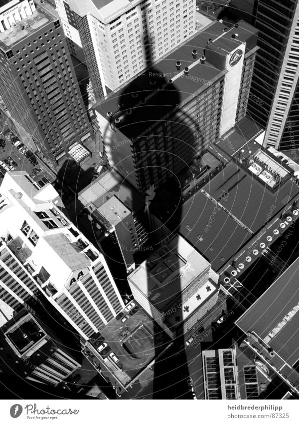 Above the roofs of Auckland New Zealand House (Residential Structure) Roof Downtown Things Shadow Black & white photo Town