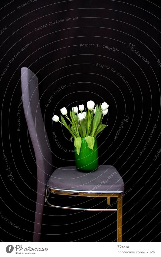 Green Flower Black Sit Stand Chair Simple Things Violet Attempt Tilt Vase Progress Containers and vessels Velvet Flower vase