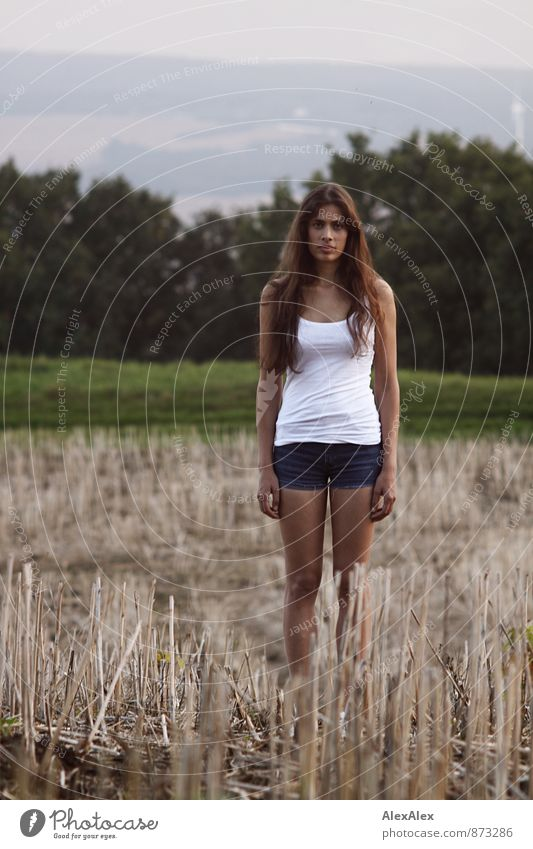 young, slim, beautiful woman stands straight on a mowed field and looks into the camera Young woman Youth (Young adults) 18 - 30 years Adults Landscape