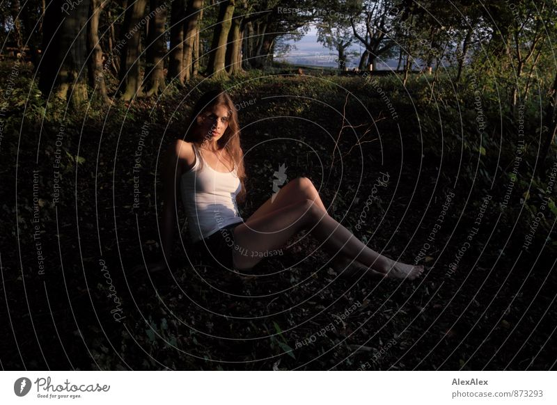young, athletic, beautiful woman sits in the evening sun in a clearing in the forest Trip Adventure Young woman Youth (Young adults) Body Barefoot 18 - 30 years