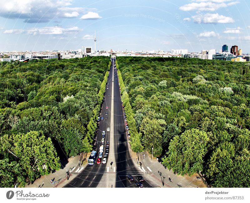 Sky Green City Sun Summer Forest Street Berlin Car Asphalt Zoo Traffic infrastructure Downtown Capital city Darken Berlin zoo
