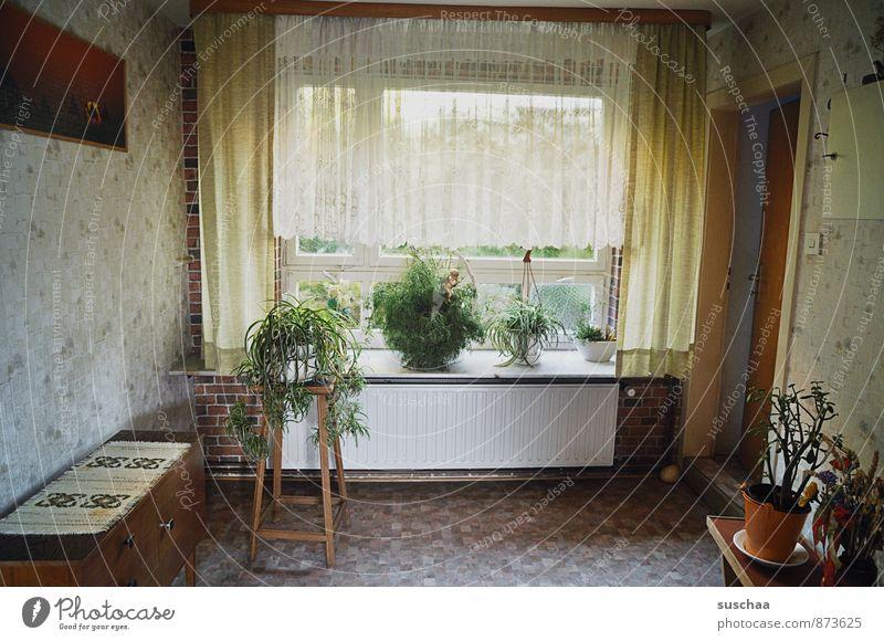 antechamber Living or residing Flat (apartment) Arrange Interior design Furniture Room Old Change Old fashioned Hallway Car Window Drape Houseplant Image Door