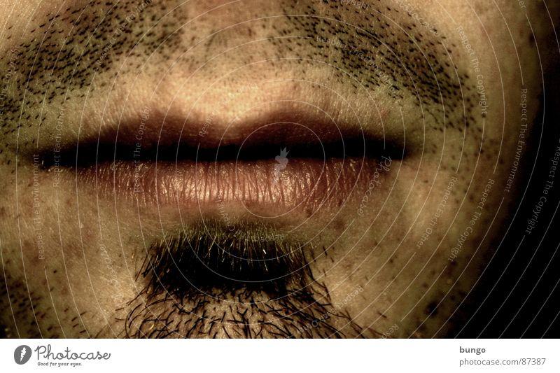 Man Masculine Nose Lips Facial hair Boredom Self portrait Old fashioned Moustache Chin Archaic Stopper Puberty Designer stubble Goatee